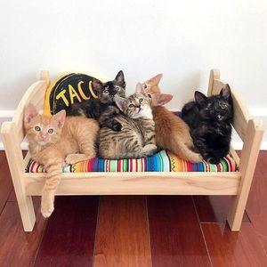 NWT IKEA DUTKIG cat pet pine wood bed +linen set